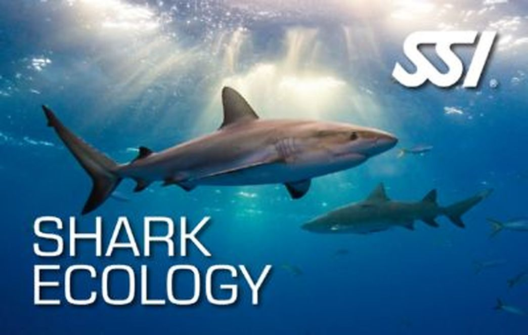 Shark Ecology SSI freediving Specialty course in Costa Brava
