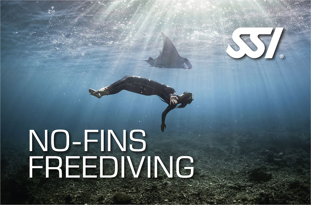 Dynamic No Fins (DNF) SSI freediving Specialty course in Costa Brava