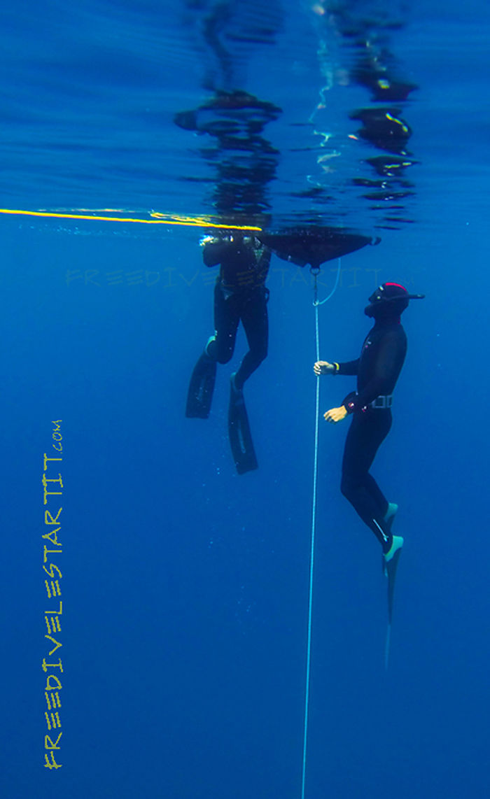 Fes-te instructor d'apnea amb Freedive l'Estartit