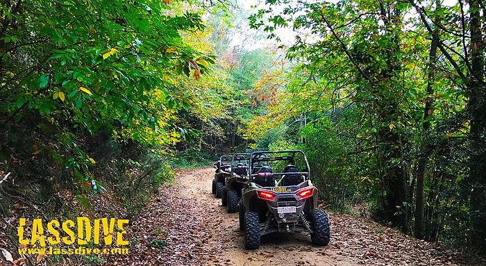 Autumn charms our buggy tours around Catalonia!