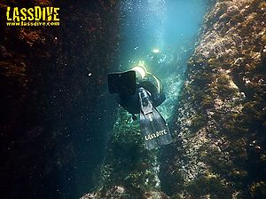 All SSI Scuba Diving Specialties at Lassdive