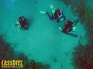 Why do a diving introduction on the Costa Brava?